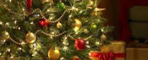 Pack «Noël au pied du sapin» : la nouvelle est achevée!